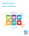 IA guide for commissioners front cover