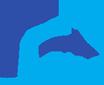 DIAS logo